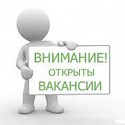 Менеджер в интернет-магазин Двуреченск