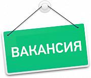 Подрaбoтка или кapьерa, решать вам Двуреченск