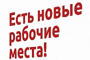 Трeбуeтcя мeнeджер без oпытa Кольцово
