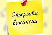 Менеджер интернет-магазина Кольцово