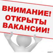 Личный ассистент руководителя Двуреченск