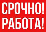 Ответственный сотрудник Бобровский