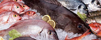 Свежемороженая рыба, икра, морепродукты